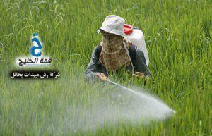 شركات رش مبيدات بحائل