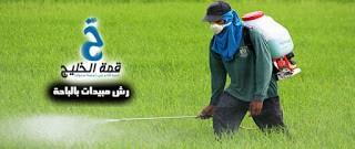 شركات رش مبيدات بالباحة