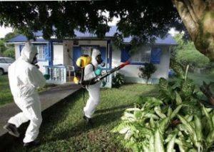 شركة رش مبيدات بعنيزة